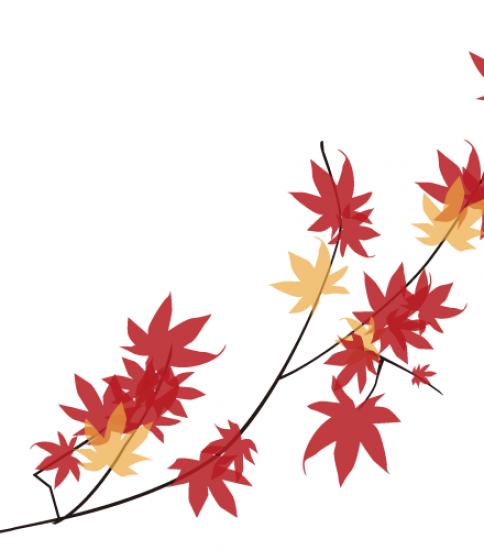 紅葉した枝