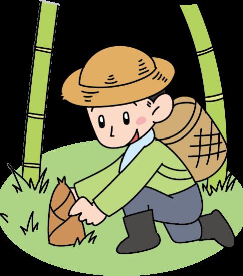 タケノコを掘る男性