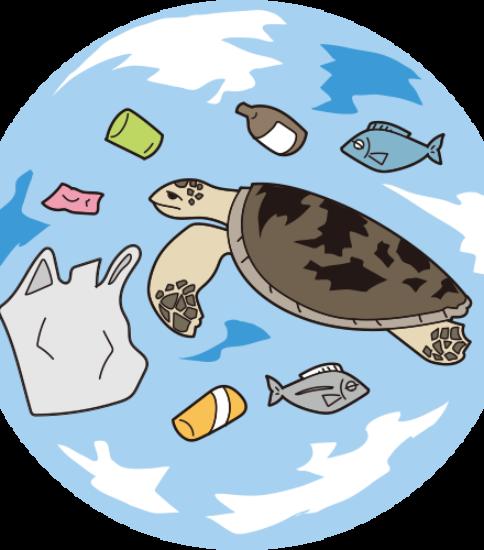 海の生き物たちの被害